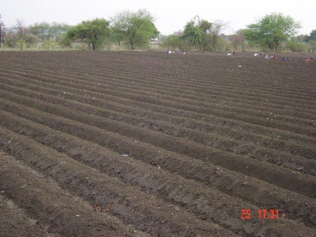 vermicompost, khaad, crops, farming,farms