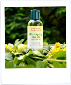 bhringraj, anti dandruff, strong and thick hair, long hair, hair conditioning, jeevan anand